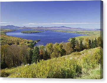 Colorful Fall Forest Near Rangeley Maine Canvas Print by Keith Webber Jr