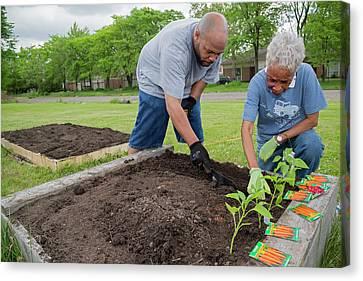 Sociology Canvas Print - Community Gardening by Jim West