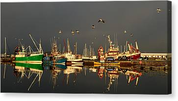 Dingle Harbor Canvas Print by Barbara Walsh