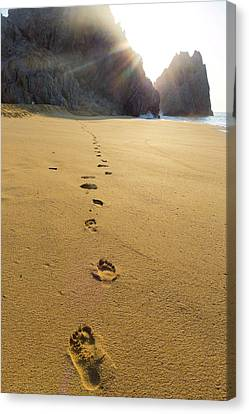 Divorce Beach, Cabo San Lucas, Baja Canvas Print by Douglas Peebles