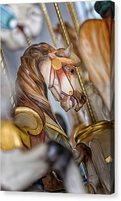 Hampton Carousel Horse Series Canvas Print