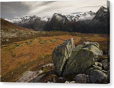 Mountain Biotope Canvas Print