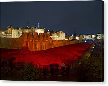 Poppies Tower Of London Night   Canvas Print by David French
