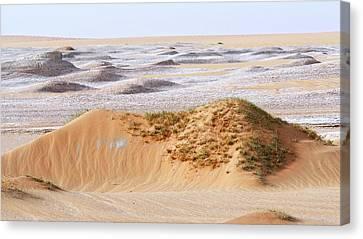 Prehistoric Saharan Lake Deposits Canvas Print by Thierry Berrod, Mona Lisa Production