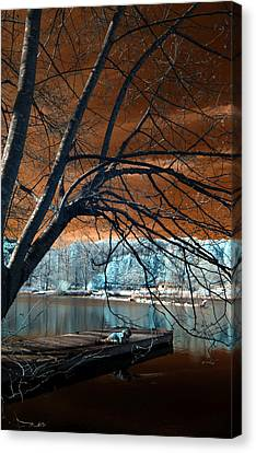 Quiet Moments Canvas Print by Rebecca Parker