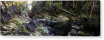 River Flowing Through A Forest Canvas Print by Panoramic Images