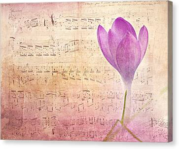 Spring Canvas Print by Heike Hultsch