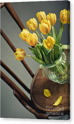 Still Life With Yellow Tulips Canvas Print