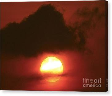Sunset  Canvas Print by Girish J