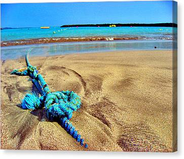 Texture Canary Islands. Canvas Print by Andy Za