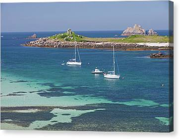 Tresco Canvas Print by Ashley Cooper