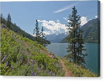 Lake Chelan Canvas Print - Usa, Washington, Stehekin by Jaynes Gallery
