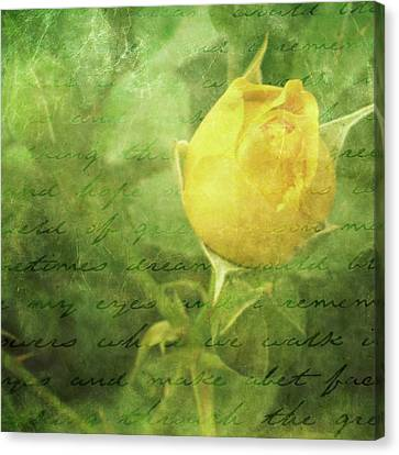 Yellow Rose Canvas Print by Cathie Tyler