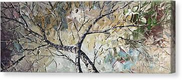 Birch Canvas Print by Willson Lau