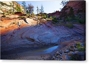 Canvas Print featuring the photograph Zion National Park Utah Usa by Richard Wiggins