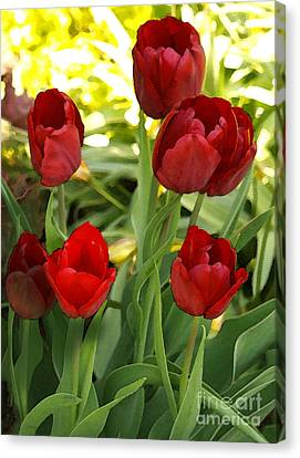 Canvas Print featuring the photograph 5tulips by Susan Crossman Buscho
