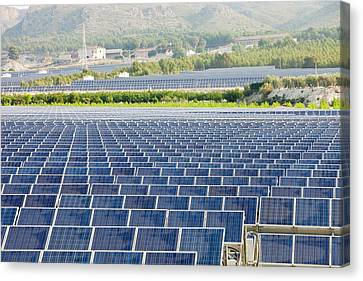 A Photo Voltaic Solar Power Station Canvas Print by Ashley Cooper