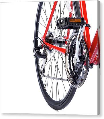 Bicycle Rear Gears Canvas Print