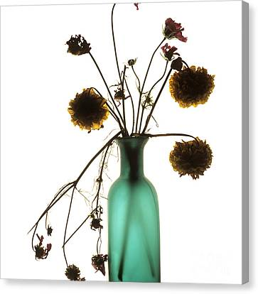 Glass Bottle Canvas Print - Bouquet by Bernard Jaubert
