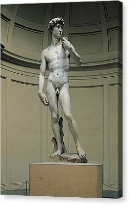 Buonarroti Michelangelo, David, 1501 - Canvas Print