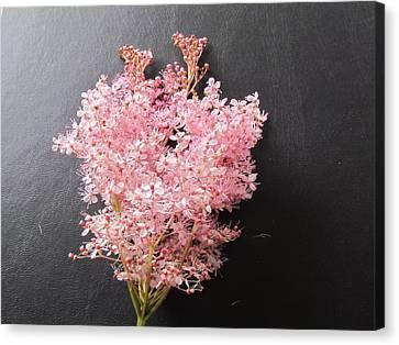 Flower Canvas Print by Joyce Woodhouse
