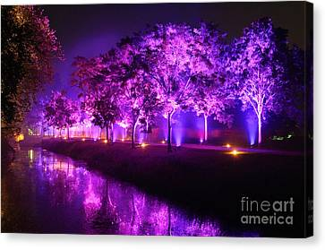 Illumina Light Show At Schloss Dyck Germany Canvas Print by David Davies