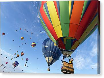 Mass Ascension At The Albuquerque Hot Canvas Print by William Sutton