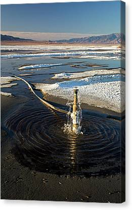 Owens Lake Re-irrigation Canvas Print