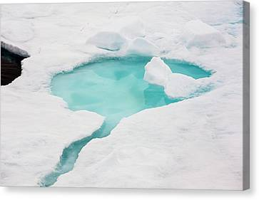 Rotten Sea Ice At Over 80 Degrees North Canvas Print by Ashley Cooper