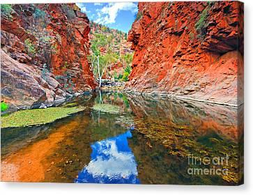 Serpentine Gorge Central Australia  Canvas Print by Bill  Robinson