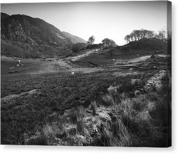 Canvas Print featuring the photograph Snowdonia National Park Wales by Richard Wiggins