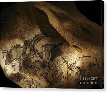 Stone-age Cave Paintings, Lascaux Canvas Print by Javier Trueba/MSF