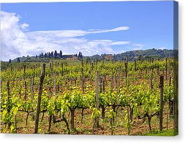 Tuscany - Montalcino Canvas Print by Joana Kruse