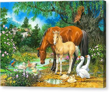 Foal And Mare By The Stream Canvas Print by John Francis