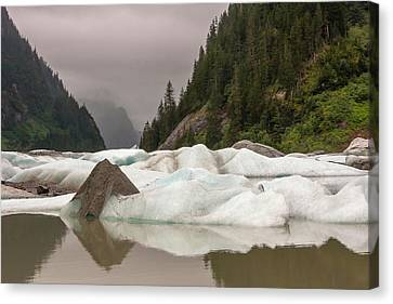 Usa, Alaska, Tongass National Forest Canvas Print by Jaynes Gallery