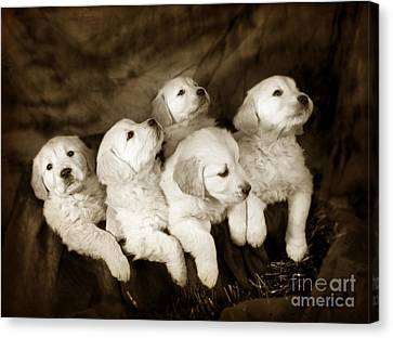 Vintage Festive Puppies Canvas Print by Angel  Tarantella