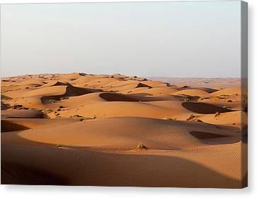 Wahiba Sands Desert, Oman Canvas Print by Sergio Pitamitz