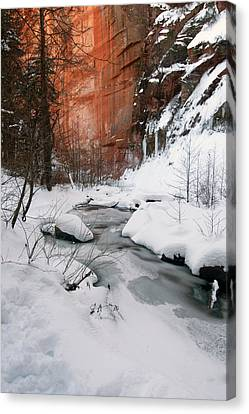 16x20 Canvas - West Fork Snow Canvas Print