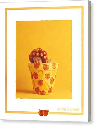 Untitled Canvas Print by Anne Geddes