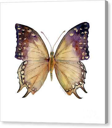 63 Great Nawab Butterfly Canvas Print by Amy Kirkpatrick