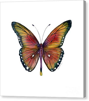 Butterflies Canvas Print - 66 Spotted Wing Butterfly by Amy Kirkpatrick