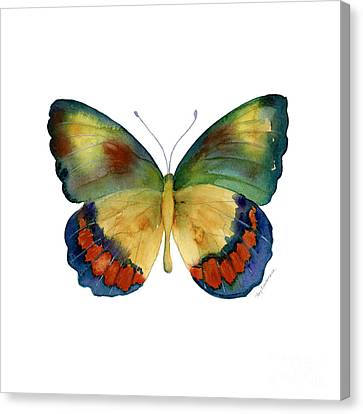67 Bagoe Butterfly Canvas Print