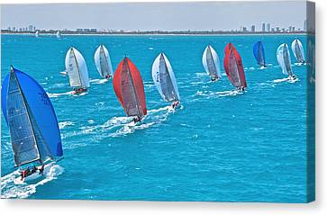 Miami Regatta Canvas Print by Steven Lapkin