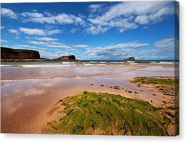 Bass Rock Canvas Print by Keith Thorburn LRPS