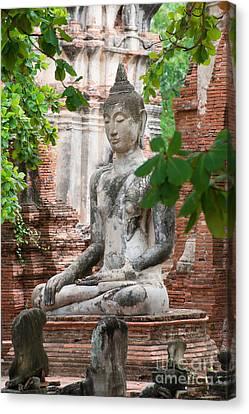 Buddha Statue Canvas Print by Yew Kwang