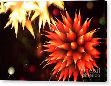 Fireworks Art Canvas Print by Benjamin Simeneta