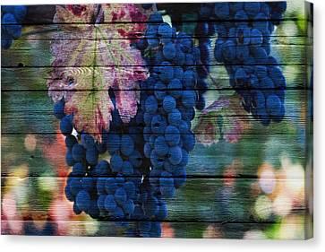Grapefruit Canvas Print - Fruit by Joe Hamilton