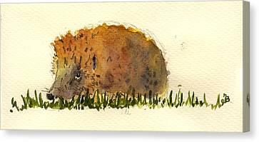 Hedgehog Canvas Print by Juan  Bosco