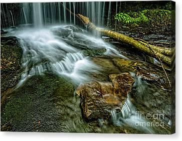 Lin Camp Branch Waterfall Canvas Print