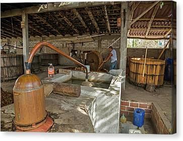 Mezcal Distillery Canvas Print by Jim West